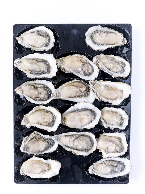 冷凍布列塔尼半殼生蠔2號(48入)<br/>FROZEN RAW HALF SHELLED OYSTER FROM BRITTANY NO.2 48PC/CS  |海鮮|生蠔