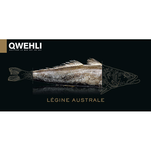 冷凍小鱗犬牙南極魚片<br/>FZ PATAGONIAN TOOTHFISH (LEGINE) FILET <br/>  |海鮮|魚類
